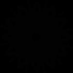 pinja sointu logo